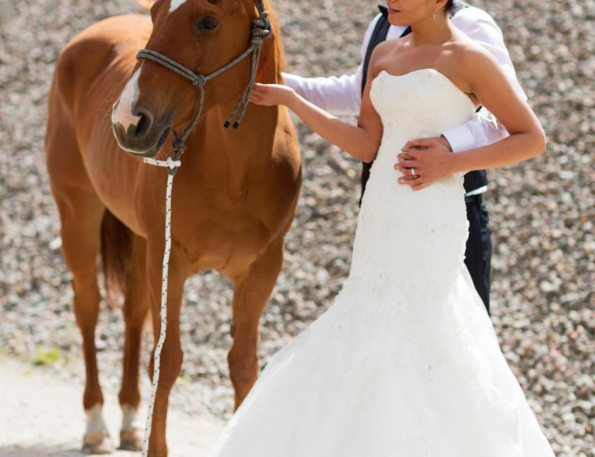 Brudpar i sandtag med häst utanför göteborg